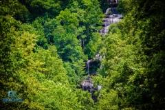 Amicalola Falls-10
