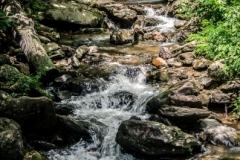 Amicalola Falls-12