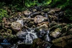 Amicalola Falls-16